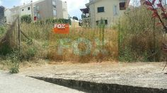 Fox Orange - Google+