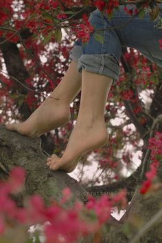 Bare foot in a tree.