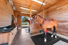 A horse farm with nearly 20 acres in Bridgehampton asks $40M - Curbed Hamptons Dream Stables, Dream Barn, Horse Stalls, Horse Barns, Horse Horse, Horse Riding, Horse Farms For Sale, Equestrian Stables, Horse Barn Designs