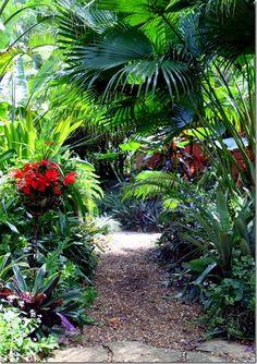 A gravel path through layered tropical plants Bali Garden, Balinese Garden, Dream Garden, Tropical Garden Design, Tropical Landscaping, Garden Landscaping, Small Tropical Gardens, Tropical Plants, Jungle Gardens