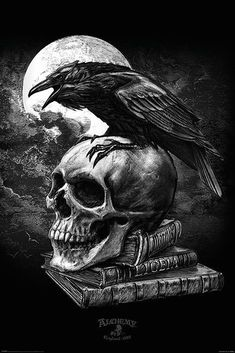 Alchemy Gothic - Fantasy Poster/Print (Edgar Allan Poe's Raven & Skull) (Size: 24 inches x 36 inches) Gothic Wallpaper, Skull Wallpaper, Crow Art, Raven Art, The Raven, Dark Fantasy Art, Dark Gothic Art, Rabe Tattoo, Gothic Drawings