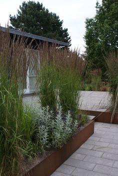 Forskellige prydgræsser omkring den store terrasse der giver sommerhuset mere rum og forbinder den smukke udsigt over fredet engdrag. Side Garden, Green Garden, Tropical Garden, Garden Art, Garden Design, Outdoor Greenhouse, Outdoor Gardens, Porch Plants, Garden Features