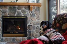 Relaxing by the fire on a cold day http://www.celebritydachshund.com/2013/12/17/dachshund-winter-pros-cons-vine-videos/