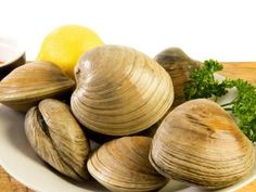 The Best Alcohol Substitutes for Cooking Fresh Seafood, Fish And Seafood, Clam Pasta, Seafood Company, Best Alcohol, Stuffed Shells, Clams, Food Network Recipes, Onion
