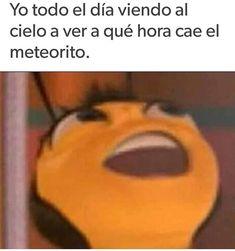 positive-memes: Save the Bees Memes Status, Dankest Memes, Funny Memes, Little Memes, Offensive Memes, Edgy Memes, Best Memes, Funny Posts, Popular Memes
