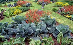 Aménagement mixte de plantes comestibles et ornementales.