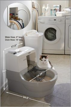 CatGenie flushes away waste and washes itself clean. It's dust free, odor free, and litter free. The environmentally-friendly Cat Genie cat box uses permanent litter granules, so you never have to touch, clean or buy cat litter. Cat Room, Cat Accessories, Buy A Cat, Cat Furniture, Cat Life, Crazy Cats, Cool Cats, Pet Care, Dog Cat