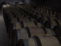 Italiens bester Blauburgunder entsteht   Der Blauburgunder reift nach der Gärung für 1 Jahr in neuen und gebrauchten Barriques aus französischer Eiche.    Von den anfallenden Trestern wird in einer der berühmtesten Brennereien Italiens aus allen drei auf dem Weingut angebauten Trestern (also den Traubenschalen) ein hervorragender Grappa produziert. Jährlich werden insgesamt 40.000 Flaschen produziert.   Inzwischen hat Gottardis Blauburgunder nicht nur in Fachkreisen eine wachsende… Computer Keyboard, Types Of Red Wine, Fandom, Flasks, Oak Tree, Italy, Computer Keypad, Keyboard