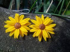 Flower power Flower Power, Flowers, Plants, Handmade, Fimo, Hand Made, Florals, Craft, Planters