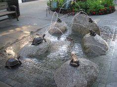Turtle Splash Pad