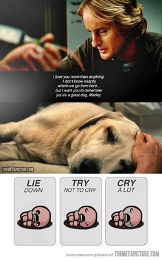 1000+ images about Sad Movie Scenes on Pinterest | Scene ...  1000+ images ab...