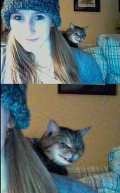 Funny pictures about Evil Cat Photobomb. Oh, and cool pics about Evil Cat Photobomb. Also, Evil Cat Photobomb photos. Funny Animal Memes, Cute Funny Animals, Funny Animal Pictures, Cat Memes, Funny Cute, Funny Photos, Funny Dogs, Cute Cats, Funny Memes