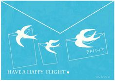 Happy flight of birds