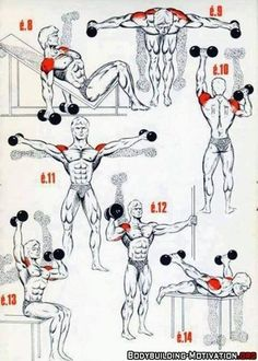 Personal Trainer Shoulder Workout is part of Bodybuilding workouts - Fitness Workouts, Gym Workout Tips, Dumbbell Workout, Easy Workouts, At Home Workouts, Fitness Tips, Fitness Motivation, Health Fitness, Traps Workout