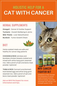 The best diet for a cat suffering from cancer is a simple homemade diet of chicken and rice or tuna and rice. Add these cancer fighting herbs to their meals, twice a day. They will help improve your pet's immunity system and help fight cancer symptoms. This kit includes four supplements that together work holistically towards fighting cancer, naturally.