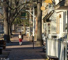 Early morning commute. #colonialwilliamsburg #dukeofgloucesterstreet #LoveVA #itsofftoworkigo #visitwilliamsburg