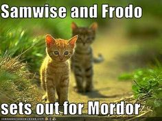 Sam, we're still in the shire. What could possibly happen?!