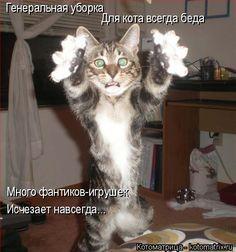 Генеральная уборка Для кота всегда беда Много фантиков-игрушек Исчезает навсегда......