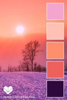 Six Snowy Beauty Inspired Color Palettes - leaf, frost, branch Peach Color Palettes, Coral Colour Palette, Sunset Color Palette, Purple Color Schemes, Sunrise Colors, Color Schemes Colour Palettes, Color Palate, Winter Colour Palette, Coral Color