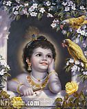 krishna801 on eBay