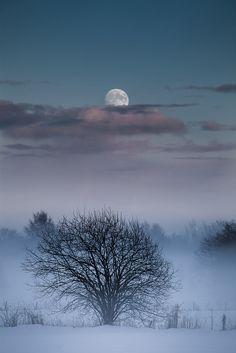 """Moon"" by ©Tore Heggelund | Torehegg; Winter sky over village of Fevik, Aust-Agder, Norway, taken Dec 26, 2012. [Please keep artwork credit and original link if reusing or repinning. Thanks!]"