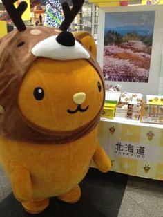 北海道 - キュンちゃんねる