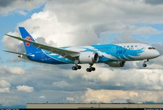 China Southern Airlines B787-8