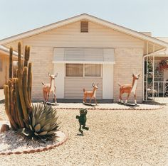 by Peter Granser from his series Sun City