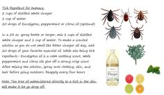 Tick Repellent for Humans