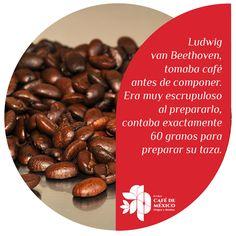 Ludwig van Beethoven, tomaba café antes de componer. Era muy escrupuloso al prepararlo, contaba exactamente 60 granos para preparar su taza.