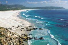 Südafrika Tagestrip: Von Kapstadt bis zum Kap der guten Hoffnung.
