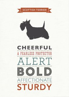 Scottish Terrier Dog Breed Traits Print Gift by WellBredDesign