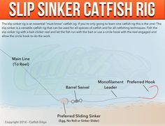 Catfish rigs for fishing for blues, channels and flathead catfish. All the catfish rigs you need to know for all the most effective catfishing techniques. Best Catfish Rig, Catfish Rigs, Catfish Bait, Catfish Fishing, Bass Fishing Tips, Fishing Rigs, Fishing Knots, Crappie Fishing, Carp Fishing