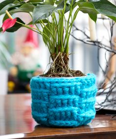 DIY: crochet plant cozy