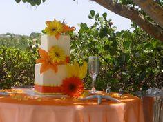 Cake Gallery Gerber Daisy 2 Tiered Wedding – St Thomas