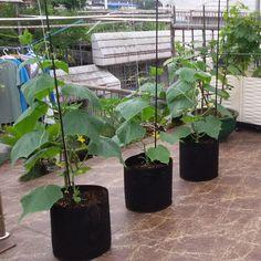 4 pcs/set Nursery Garden Planting Grow Bags Fabric Pots Handles of Non-Woven NEW #Unbranded