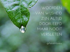 Woorden van wijsheid zijn altijd doorleefd maar nooit versleten...