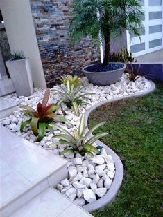Gardens Discover Gravel Landscaping Small Front Yard Landscaping Landscaping With Rocks Modern Landscaping Front Yard Design Front Yard Ideas Florida Landscaping Small Garden Ideas Gravel Garden Ideas For Front Of House Garden Types, Diy Garden, Garden Cottage, Garden Beds, Balcony Garden, Summer Garden, Shade Garden, Small Front Yard Landscaping, Landscaping With Rocks