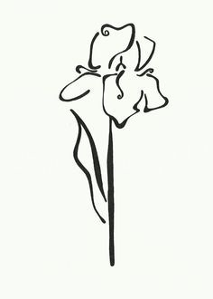 """""""Iris Flower"""": Double-Matted in White, Plastic-Sleeved & Hand-Signed by the artist. 5x7 is $12 (+ shipping) 8x10 is $20 (+ shipping) 11x14 is $28 (+ shipping) www.VonGArt.com (Single, Leaves, Floral, Silhouette, Whimsical, Bouquet, Petals, Art, Tattoo)"""