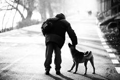 Street dog and a human (copyright ROLDA)
