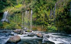 One of 15 beautiful and hidden waterfalls in Northern California 4. Mossbrae Falls