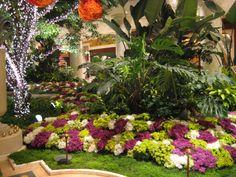 Wynn: Hotel & Casino Resort