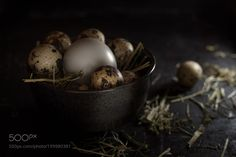 Quail and Chicken Eggs by xplor-creativity