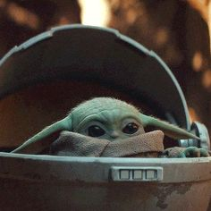 101 Inspirational Yoda Quotes from the Jedi Master Yoda Gif, Yoda Meme, Yoda Species, Yoda Images, Yoda Quotes, Star Wars Baby, Foto Pose, Disney Star Wars, Animation