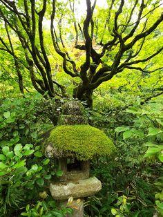 daitoku-ji, kyoto 大徳寺  京都