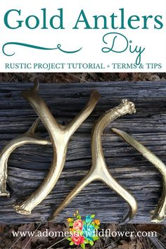 Gold Antlers: Rustic DIY Project + Terms & Tips