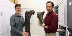 Dinosaur fossil found in Washington state.