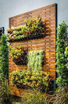 New eine gr ne Wand auf Holz gepflanzt ein so sch ner vertikaler Garten