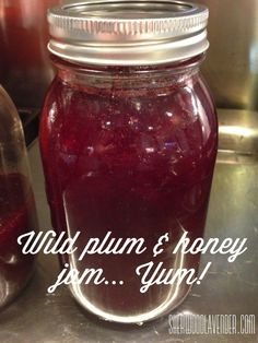 Wild plum and honey jam made from foraged wildcrafted wild plums - homesteading at its best!