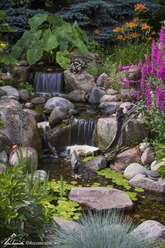 Aquascape is the leading manufacturer of water features, water garden, pondless fountains, and pond products. Get your water feature from Aquascape! Backyard Water Feature, Ponds Backyard, Koi Ponds, Backyard Pergola, Backyard Waterfalls, Garden Ponds, Garden Stream, Gazebo, Outdoor Water Features